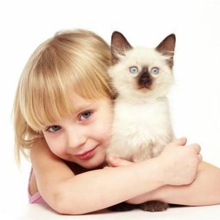rp_выбрать_домашнее_животное.jpg